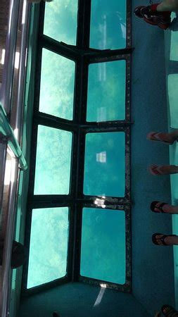 Glass Bottom Boat Key West Tripadvisor by Key West Glass Bottom Boats Fl Omd 246 Tripadvisor