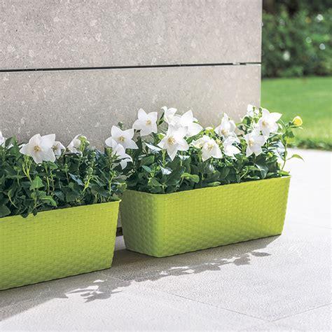 Blumenkasten Mit Wasserspeicher 102 by Stefanplast Blumenkasten 30 Cm Mit Wasserspeicher