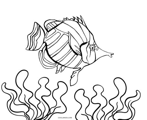 printable fish coloring pages  kids coolbkids