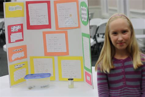 Pin Bread Mold Science Fair Projects Ideas Ezinearticles