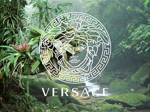 Versace Tumblr Images