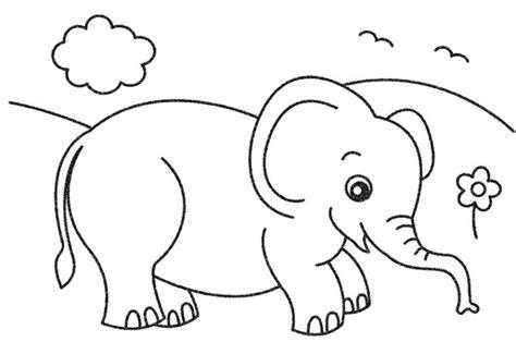 gambar kumpulan sketsa gambar hewan mewarnai anak