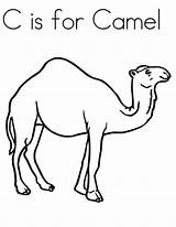 Camel Coloring Pages Drawing Preschool Animal Kindergarten Craft Colouring Printable Camels Line Cartoon Animals Students Adult Desert Printables Funny Getcoloringpages sketch template