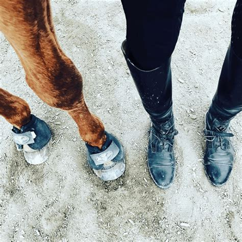 boots horseback beginners riding approved rookie perform rider horse help quality