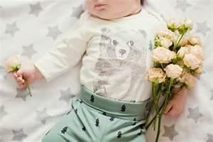 Quoi Offrir Pour Une Naissance : quelles fleurs offrir pour c l brer une naissance ~ Melissatoandfro.com Idées de Décoration