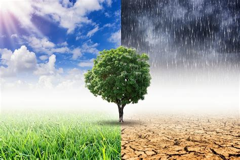 Climate change and risk management event - GOV.UK