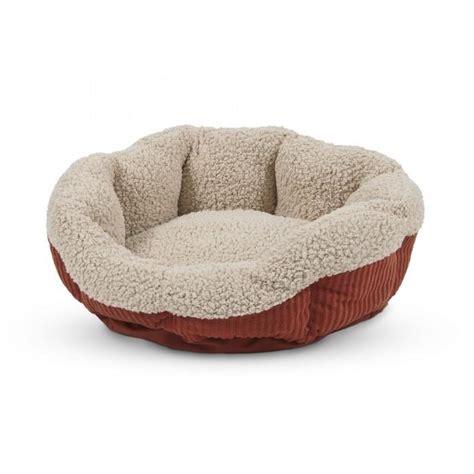 aspen pet self warming cat bed 48cm 290 pet bedding