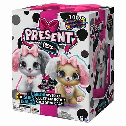 Present Pets Fancy Spin Master Surpresa Spinmaster