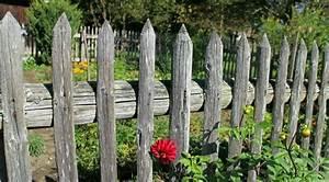 Idee Cloture Jardin : id e cl ture jardin pour un ext rieur pratique et esth tique ~ Melissatoandfro.com Idées de Décoration