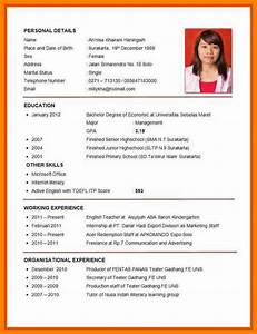 8 example of cv for job application pdf bike friendly With example of resume for job application