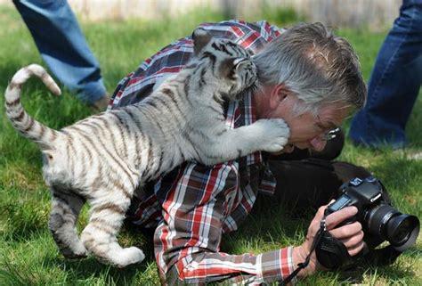 50 Photos De Rencontres Entre Photographes Et Animaux