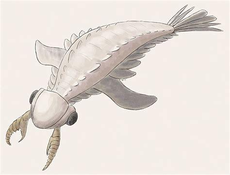 Lyrarapax Prehistoric animals Prehistoric creatures