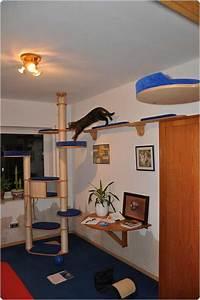 Kletterbaum Für Katzen : katzenkratzbaum online designer konfigurator von catwalk ~ Lizthompson.info Haus und Dekorationen