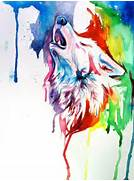 Watercolor Paintings by Katy   Art and Design  Colorful Wolf Painting