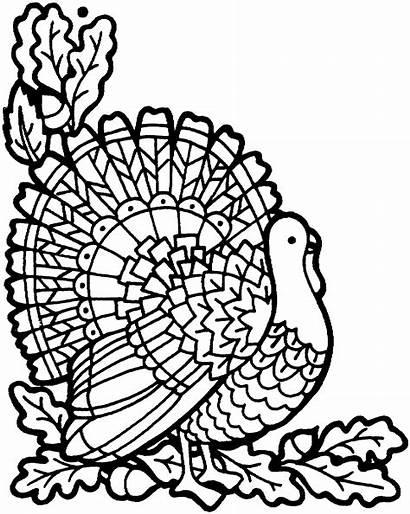 Coloring Turkey Pages Thanksgiving Printable November Sheets