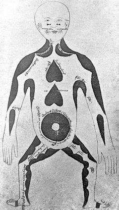 human digestive system tract school pinterest human