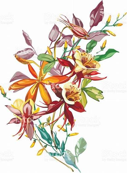 Clipart Summer Plants Flower Watercolor Clipground Cliparts