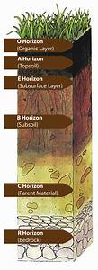 Soil Horizon Geology Fundamentals Fandom Powered By Wikia