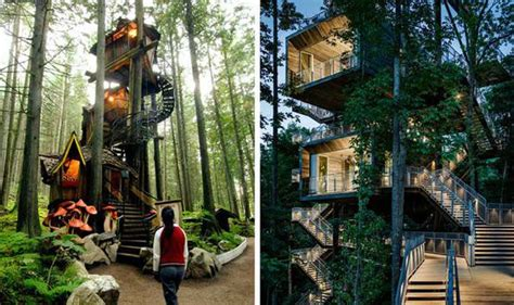 Beautiful Brazilian House Built Up And Around A Tree :  Quirky Beautiful Treehouses Beautiful Forests