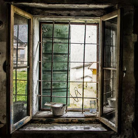 Finestra Sul Cortile by Rear Window Finestra Sul Cortile Nature Wildlife