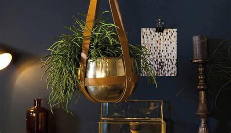 de mooiste bloempotten voor  je stek interior junkie