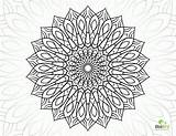 Coloring Flower Complex Pages Mandala Sheets Printable Adults Geometric Colouring Complicated Adult Books Dragon Getcolorings Comments Getdrawings Template sketch template