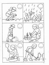 Plantation Pracy Karty Coloring Chomikuj Pl Listy Sequencing Activities Secuencia Para Histoire Vocabulaire Raconter το Escritura Cards Planta Preschool Worksheets sketch template