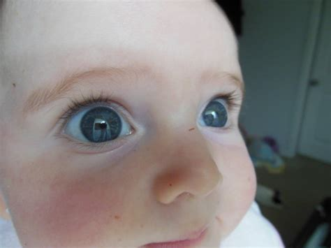 what eye color will my baby what eye color will my baby picture babycenter