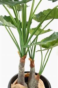 Plante Tropicale D Intérieur : plante artificielle tropicale alocasia d coration d 39 int rieur cm ~ Melissatoandfro.com Idées de Décoration