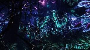 Beautiful pandora forest at night | Avatar | Pinterest ...