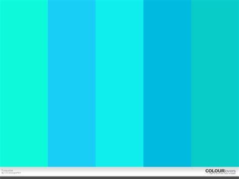 Aqua Colored Home Decor: Turquoise Color Swatch, One Wall This Color On The Far
