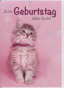 lustige postkarten sprüche geburtstagskarte tiere katze zum geburtstag alles gute doppelkarten grusskartenladen de