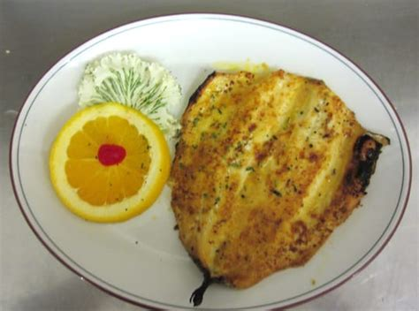 broiled scrod broiled scrod yelp
