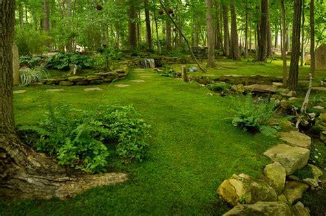 country backyards country backyard look amazing landscape pinterest