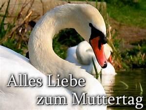 Was Kann Ich Meiner Mama Zum Muttertag Basteln : muttertag ~ Buech-reservation.com Haus und Dekorationen