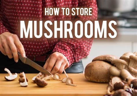 how to store mushrooms how to store mushrooms how long do they last kitchensanity