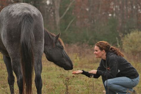 horse savor jobs care human choosing communication gatherings horses equine relationship personality loves vs careers training field