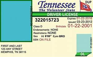 Tennessee drivers license editable psd template download for Tennessee drivers license template
