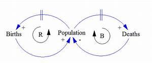 Casual Loop Diagram