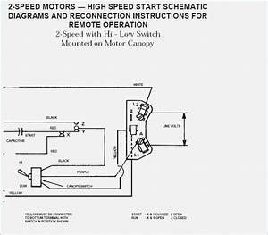 Wiring Diagram  32 Century Pool Pump Wiring Diagram