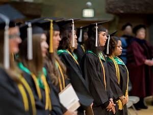 undergraduate honors program roosevelt