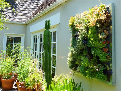 Vertical Garden by Plants On Walls Vertical Garden Systems Gilman Succulent