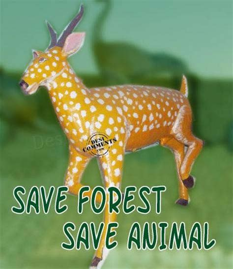 Quotes On Save Wildlife In Hindi