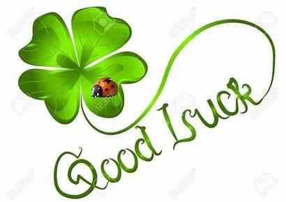 Luck Smiley Clover Leaf Lady Bug Irish