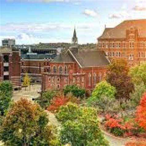 midwestern university physician assistant program downers