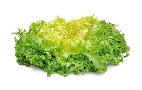 la cuisine verte salade frisée la vie grande épicerie et fraiche