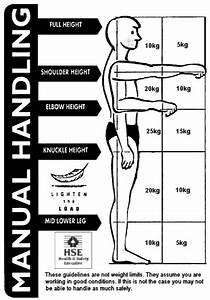 Manual Handling At Work - A Brief Guide