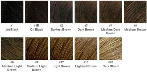List Of All Hair Colors by Etheliana