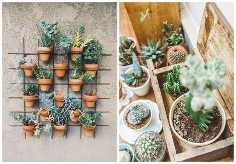 plante dans chambre à coucher plantes d 39 intérieur décorez avec des plantes vertes