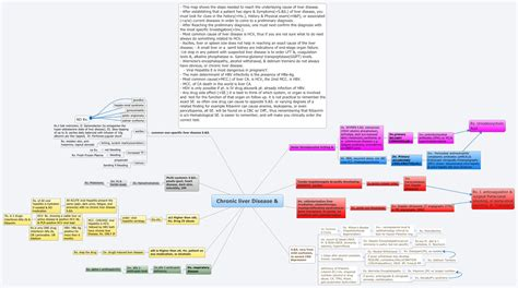 chronic liver disease xmind mind mapping software